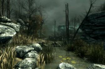 Ancient Environment (10)
