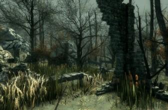 Ancient Environment (8)